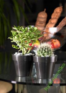 Doniczki Na Kaktusy Mitu 1616 Cm Osłonka Kolory