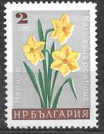 Bułgaria czysty luzak Mi 1685 super kwiaty żonkile