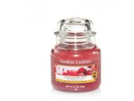 Yankee Candle Cranberry Ice mała świeca mały słój