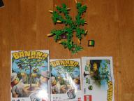 LEGO BANANA BALANCE 3853