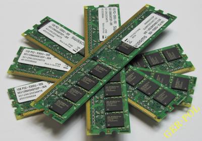 PAMIĘĆ RAM_SWISSBIT_2GB _DDR2_PC2-5300_667MHZ