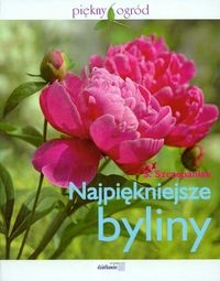 Najpiękniejsze byliny kwiaty w ogrodzie