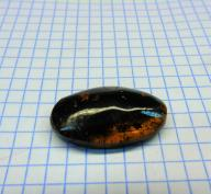 Bursztyn bałtyck kaboszon.Waga:3,3 grama. W