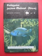 AKWARIUM Pielęgnice Jeziora Malawi Niasa