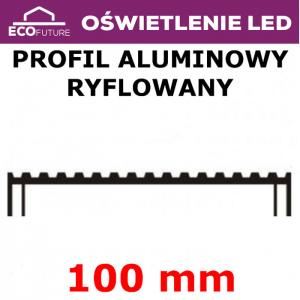 Profil Aluminiowy Radiator Power LED 80 cm