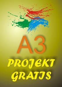 Plakaty Reklamowe Format A3 5000 Szt Projekt