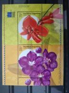 Czysty Flora Kwiaty Orchidee - Argentyna