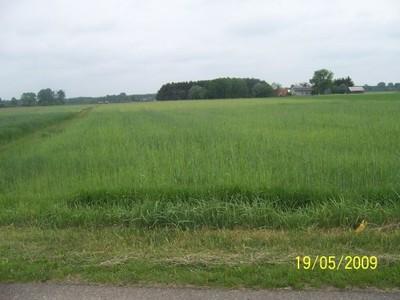 Działka rolno-budowlana 3000mkw