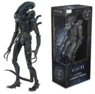 ALIENS Warrior Neca w skali 1/4  55 cm !!!