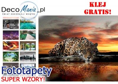 Fototapety Tapeta Cn Wzory Panterka Gepard Kot Xl 6081052858