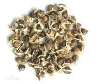 Moringa Oleifera nasiona do sadzenia 10 szt.