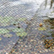 Siatka do oczka wodnego AquaNet 6x10m
