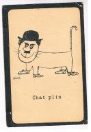 Pocztowka , obieg , humor , Chat plin.