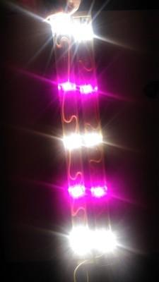 Oświetlenie Power Led Do Akwariumroślinne 6877988639