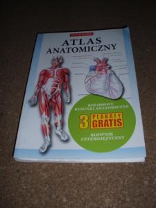 Buchmann Atlas Anatomiczny 2 Plakaty D4 3668724944