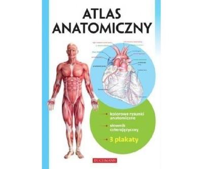 Atlas Anatomiczny W 2016 Buchmann Br 6766146983