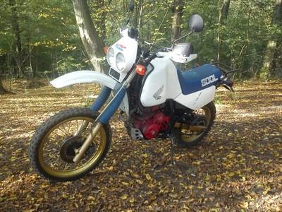 Honda Xl 600 Lm 6944892477 Oficjalne Archiwum Allegro