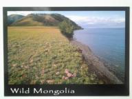 Mongolia, jez.Khovsgol, Park Narodowy