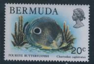 Bermuda 20c - Chaetodon capistratus