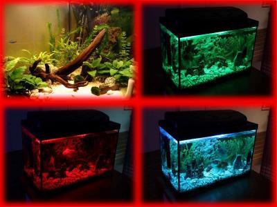 Oświetlenie Led Akwarium 20 Kolorów 2x70cm F V
