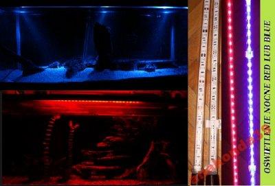 Oswietlenie Akwarium Led 50 Cm Nocne Kolory 6098826462