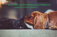 Psychologia zwierząt kurs
