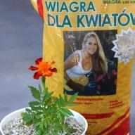 """Zeolit - """"Wiagra dla kwiatów"""" 2kg"""
