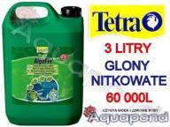 ALGOFIN TETRA ANTYGLON 3l NA GLONY NITKOWATE 60m3