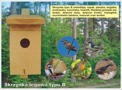 Budka lęgowa dla ptaków typ B, Budka dla ptaków