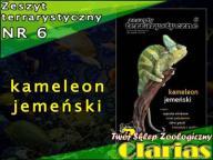 ZESZYT TERRARYSTYCZNY NR 6 - KAMELEON JEMEŃSKI