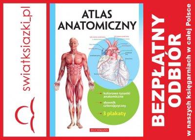 Atlas Anatomiczny 3 Plakaty 24h 6370879350 Oficjalne