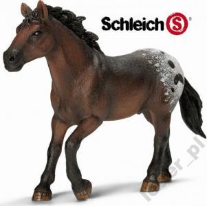 Konie Schleich Kon Ogier Rasy Appaloosa 13732 5939183284 Oficjalne Archiwum Allegro