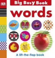 Big Busy Book Words (9781409334934) DK