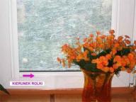 > Folia okienna matowa dekoracyjna Lambert 022
