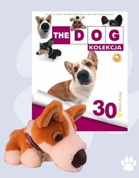 Kolekcja The Dog 30 Welsh Corgi 6908399448 Oficjalne Archiwum Allegro