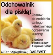 Domowy ODCHOWANIK dla kurczaków  ZESTAW TANIO