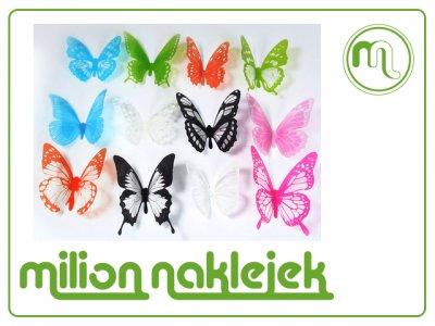 Motyle Dekoracyjne Na ścianę 3d Pcv Brokat 12 6321162921