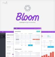 wordpress bloom - wtyczka