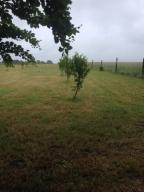 Działka rolna 3,3 ha. Ogrodzona. SOWINKO