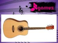 TANGLEWOOD DBT DLX Gitara akustyczna ZESTAW