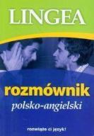 Rozmównik polsko-angielski Ebook.