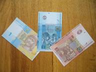 Zestaw banknotów Ukrainy
