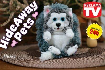 Hide Away Pets Maskotka Kulka Piesek Husky 6103801509 Oficjalne Archiwum Allegro