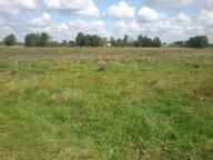 Ziemia rolna 17000 m2 malownicza okolica,MARIANOWO