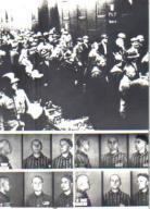Duchowni w obozie w Auschwitz