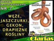 ZESZYT TERRARYSTYCZNY NR 7 - WĘŻE, JASZCZURKI