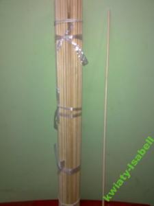 Patyczki Do Storczykow Podporki 50 Cm 10 Szt 2421502666 Oficjalne Archiwum Allegro