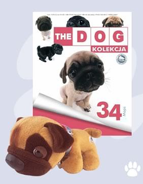 Kolekcja The Dog 34 Mops 6908399893 Oficjalne Archiwum Allegro
