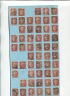 211 Czerwonych Wiktorii