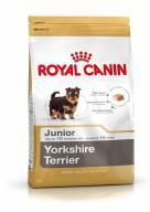 SHN Breed Yorkshire Jun 0,5 kg